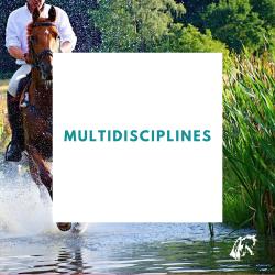 Multidisciplines : Hiver...