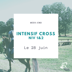 WE intensif - 28 juin - cross